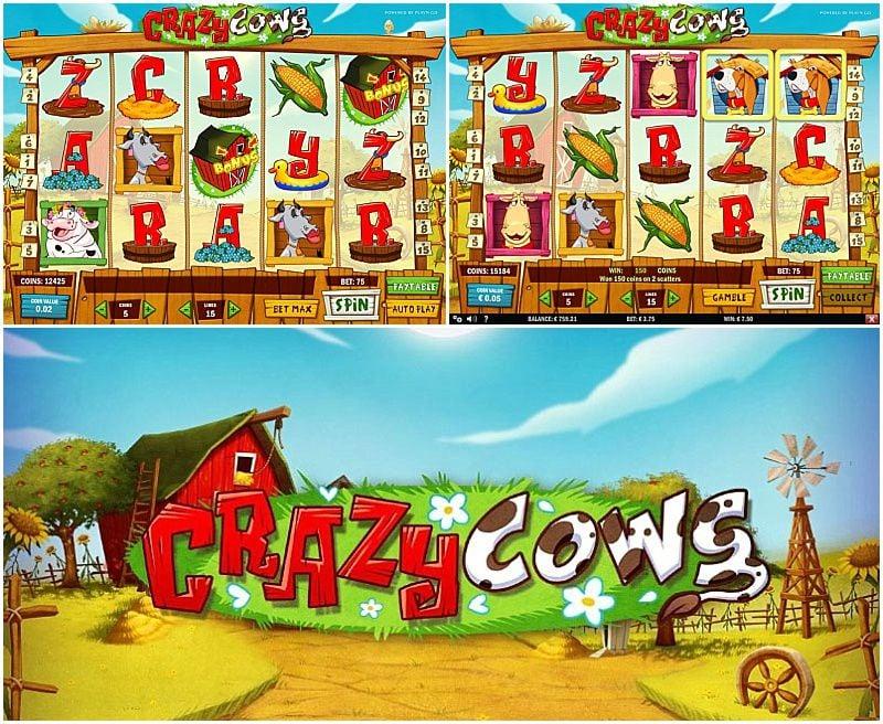Crazy Cows 239301